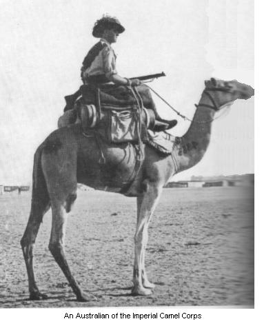 An Australian member of the Imperial Camel Corps