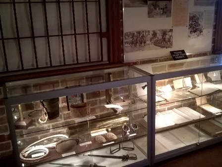 The Museums new display cabinets