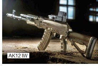 AK 12 Individual Weapon